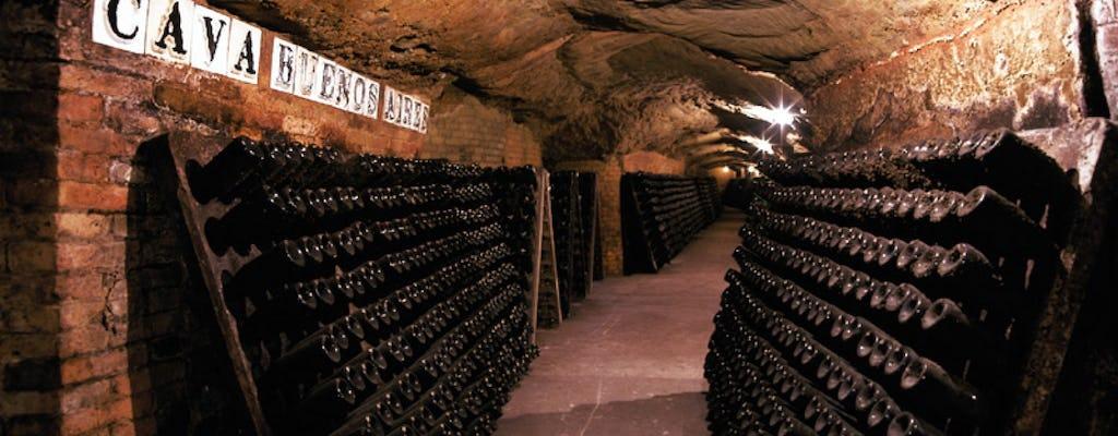 Tour de Montserrat avec visite des caves de Codorniu
