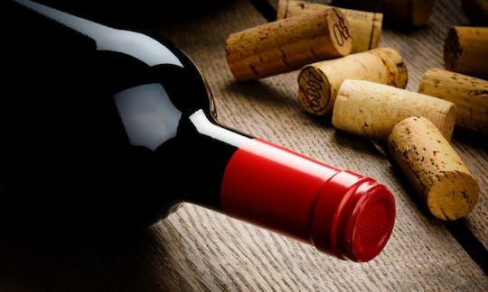 Tour in bici dell'Amarone e degustazione di vini