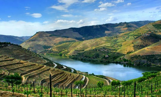 Douro full-day tour