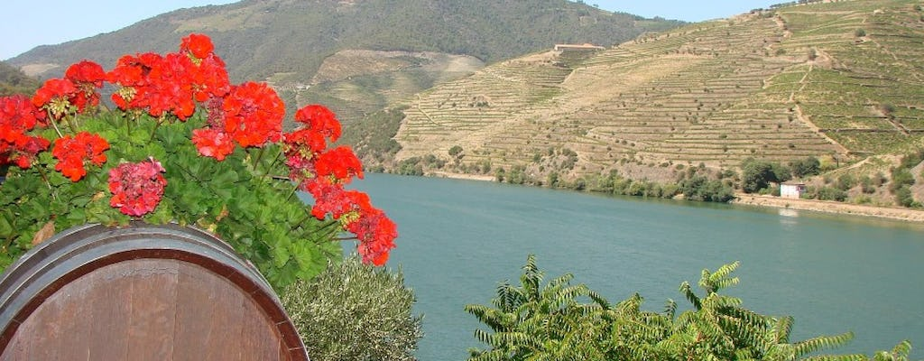 Wine tour of Douro Valley - Full day