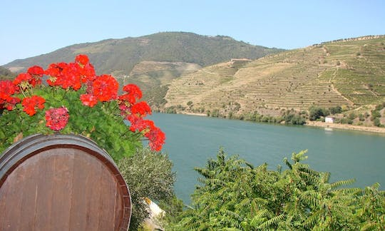 Wine tour of Douro Valley full-day