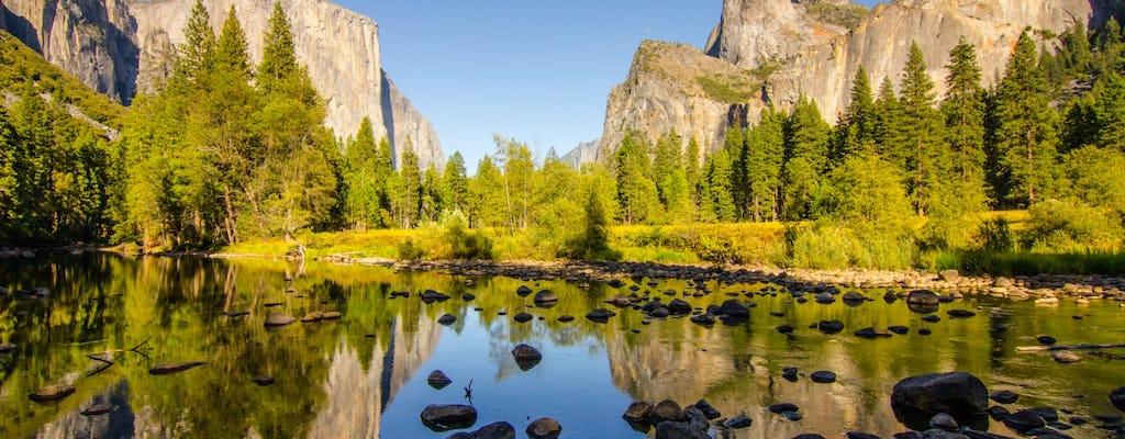 Tour di un'intera giornata allo Yosemite National Park da San Francisco