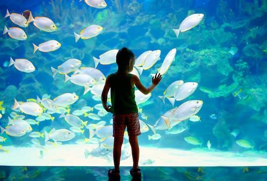 Biglietto salta fila per il Museo Oceanografico di Monaco