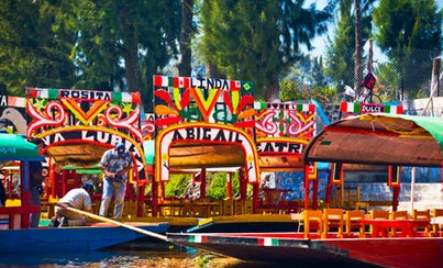 Excursions,Full-day excursions,Excursion to Xochimilco,Excursion to Coyoacan