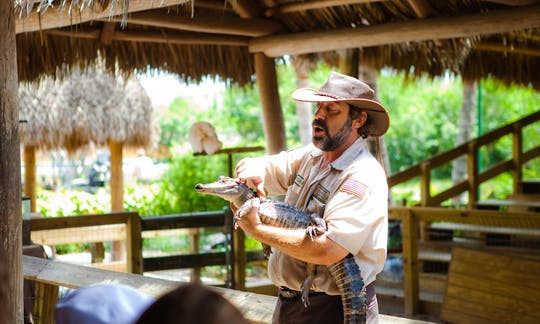 Everglades and Miami guided tour