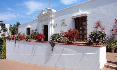 Ver la ciudad,Gastronomía,Noche,Tours nocturnos,Tours nocturnos,Con Museo Larco incluido,Museo Larco,Tour por Lima