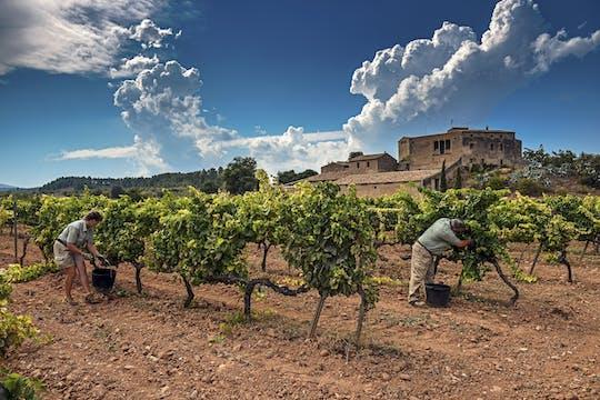 Wine and Cava Experience: tour da Barcellona