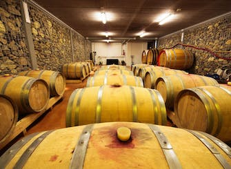 Off the beaten track wine tour in Monferrato, Piedmont from Milan or Turin