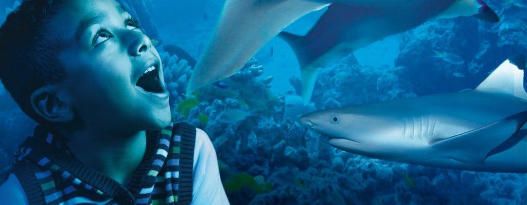 Sea Life London Aquarium : Billets