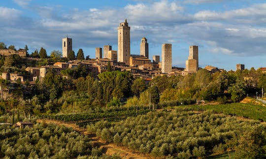Pisa, Siena, San Gimignano and Chianti tour with lunch at a wine farm