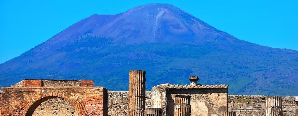 Pompeia - Excursão Expresso de Meio Dia A Partir De Roma Com Comboio de Alta Velocidade