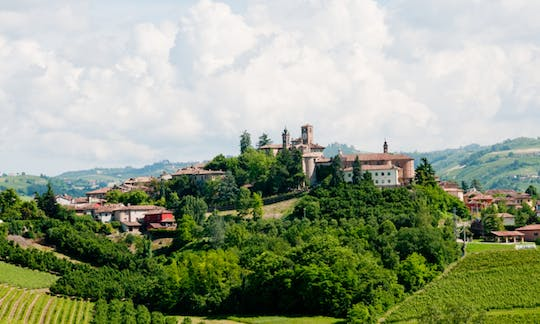 Private visit and Barbaresco wine tasting at biodynamic winery in Piedmont