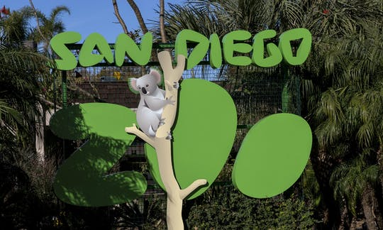 San Diego Zoo 1-day pass