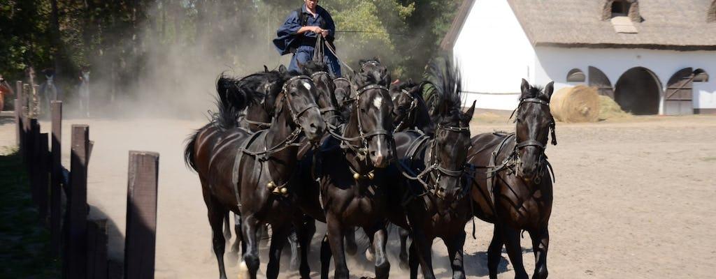 Пуста экскурсии из Будапешта с конное шоу и обед