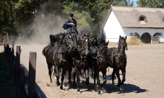 Puszta tour from Budapest with horse show and lunch