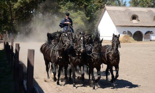 Puszta tour da Budapest con spettacolo di cavalli e pranzo