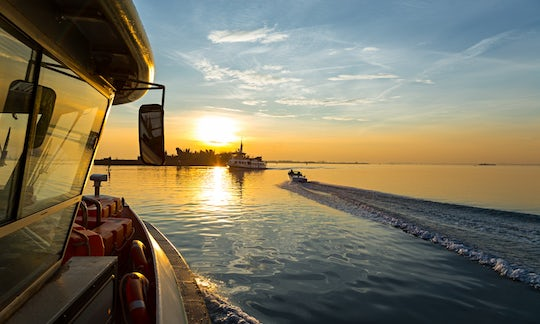 Alilaguna Transport from Venice Airport and Cruise Terminal for 72 hours