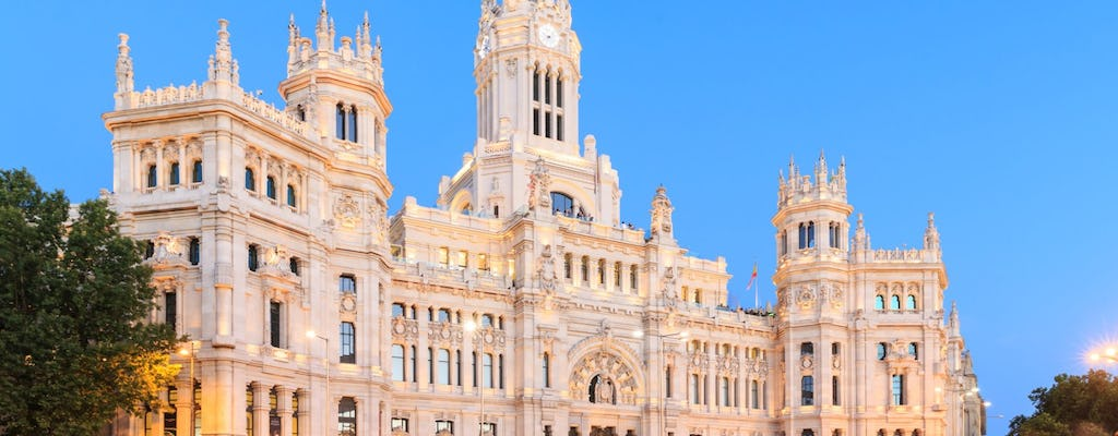Panoramic Madrid tour with skip-the-line tickets to Reina Sofia Museum