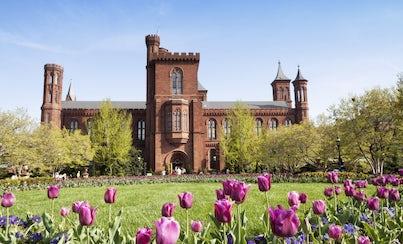City tours,Excursions,Historical & Cultural tours,Multi-day excursions,Washington Tour