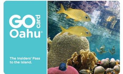 Ver la ciudad,Tickets, museos, atracciones,Pases de ciudad,Entradas a atracciones principales,Excursión a Oahu