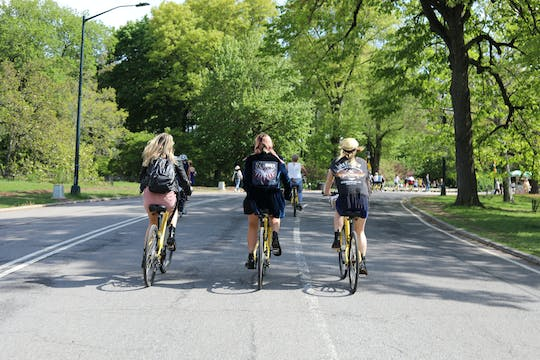 New York City Highlights bike tour