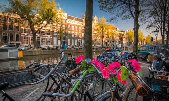 Amsterdam 3-hour private bike tour of the city center