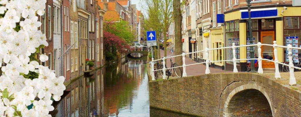 Tour privado a pie de Delft
