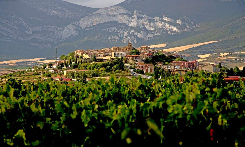 Ver la ciudad,Ver la ciudad,Salir de la ciudad,Excursiones de un día,Excursión a Vitoria,Excursión a Zona de vinos de Rioja
