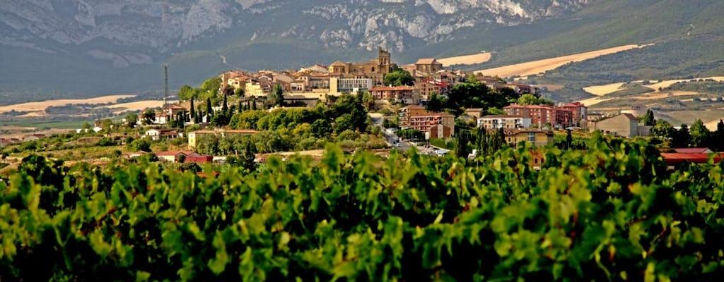 Excursão de dia inteiro na região vinícola de Vitória e Rioja