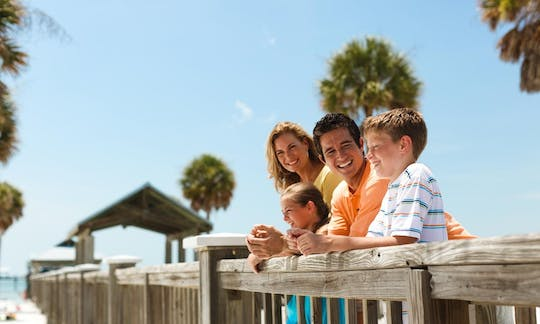 Clearwater Beach: deep sea fishing with lunch and roundtrip transportation