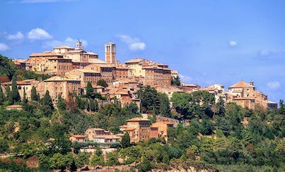 Excursions,Gastronomy,Full-day excursions,Special lunch and dinner,Oenological tours,