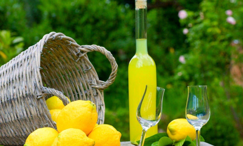 Gastronomía,Gastronomía,Comidas y cenas especiales,Tours enológicos,Tours enológicos,Otros gastronomía,