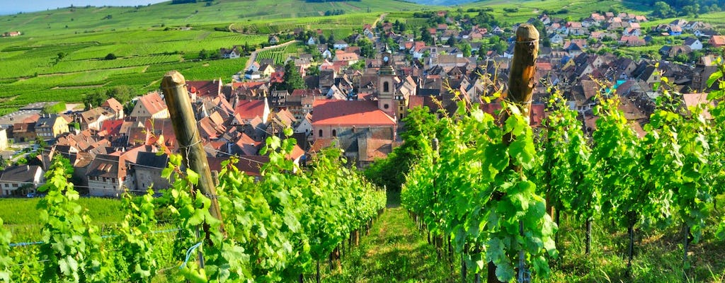 Champagne vineyards and cellars day trip