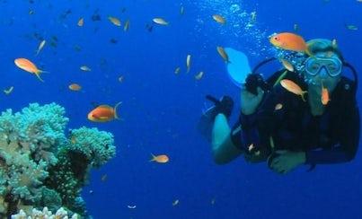 Salir de la ciudad,Excursions,Actividades,Activities,Excursiones de un día,Full-day excursions,Actividades acuáticas,Water activities,Excursión a Key West,Excursion to Key West