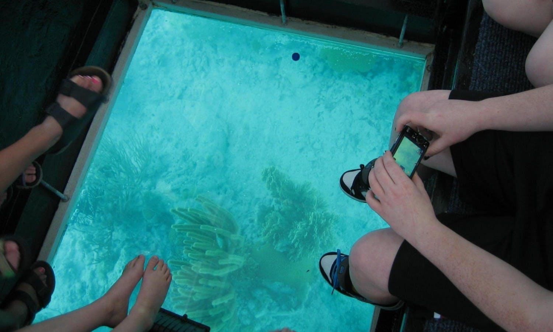 Ver la ciudad,Salir de la ciudad,Actividades,Visitas en barco o acuáticas,Excursiones de un día,Actividades acuáticas,Excursión a Key West