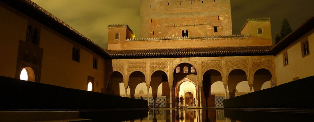 Guided visit to the Alhambra Palaces by night