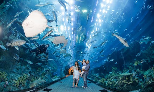 Burj Khalifa At the Top tickets with Dubai Aquarium