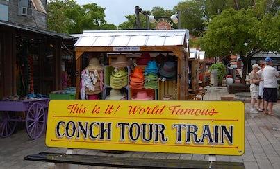 Ver la ciudad,City tours,Salir de la ciudad,Excursions,Visitas en autobús,Bus tours,Excursiones de un día,Full-day excursions,Excursión a las Islas Bahamas,Fort Lauderdale Tour,Excursión a Key West,Excursion to Key West