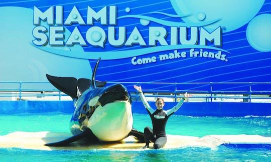 Входные билеты в Морской аквариум Майами