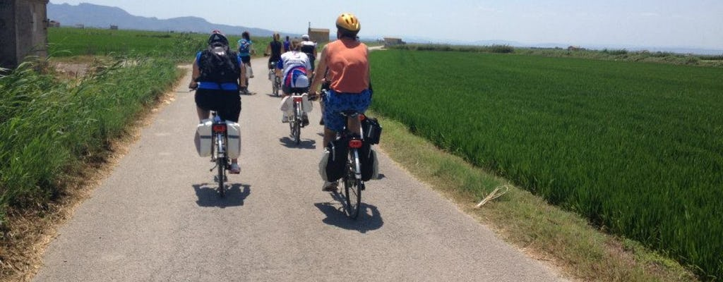 Tour in bicicletta dell'Albufera