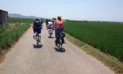 Ver la ciudad,Visitas en bici,Excursión a la Albufera,Tour por Valencia