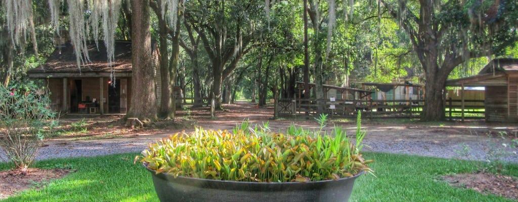 Swamp tour and Destrehan Plantation tour