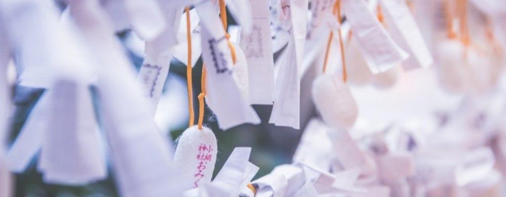Passeio guiado em Tóquio - curiosidades culturais do Japão