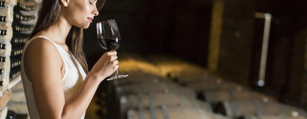 Excursión vinícola gourmet con comida en Margaux desde Burdeos