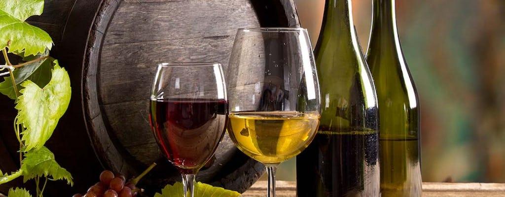 Tour del vino Brunello di Montalcino desde San Gimignano