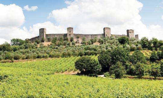 Visita a Chianti y al castillo desde San Gimignano con degustación de vinos