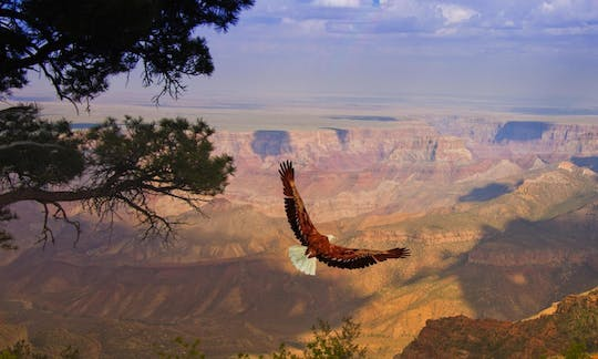 Grand Canyon West Rim day trip from Las Vegas