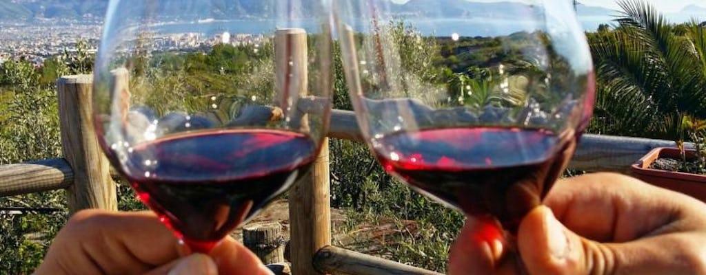 Degustazione di vini sul Monte. Vesuvio