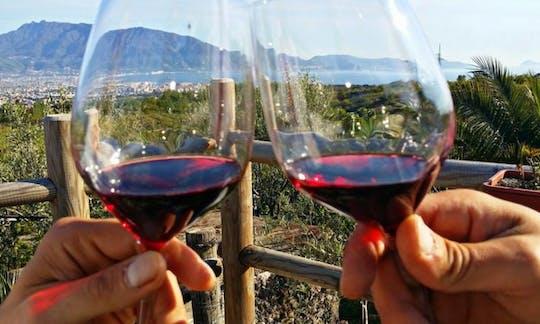 Wine tasting on Mt. Vesuvius