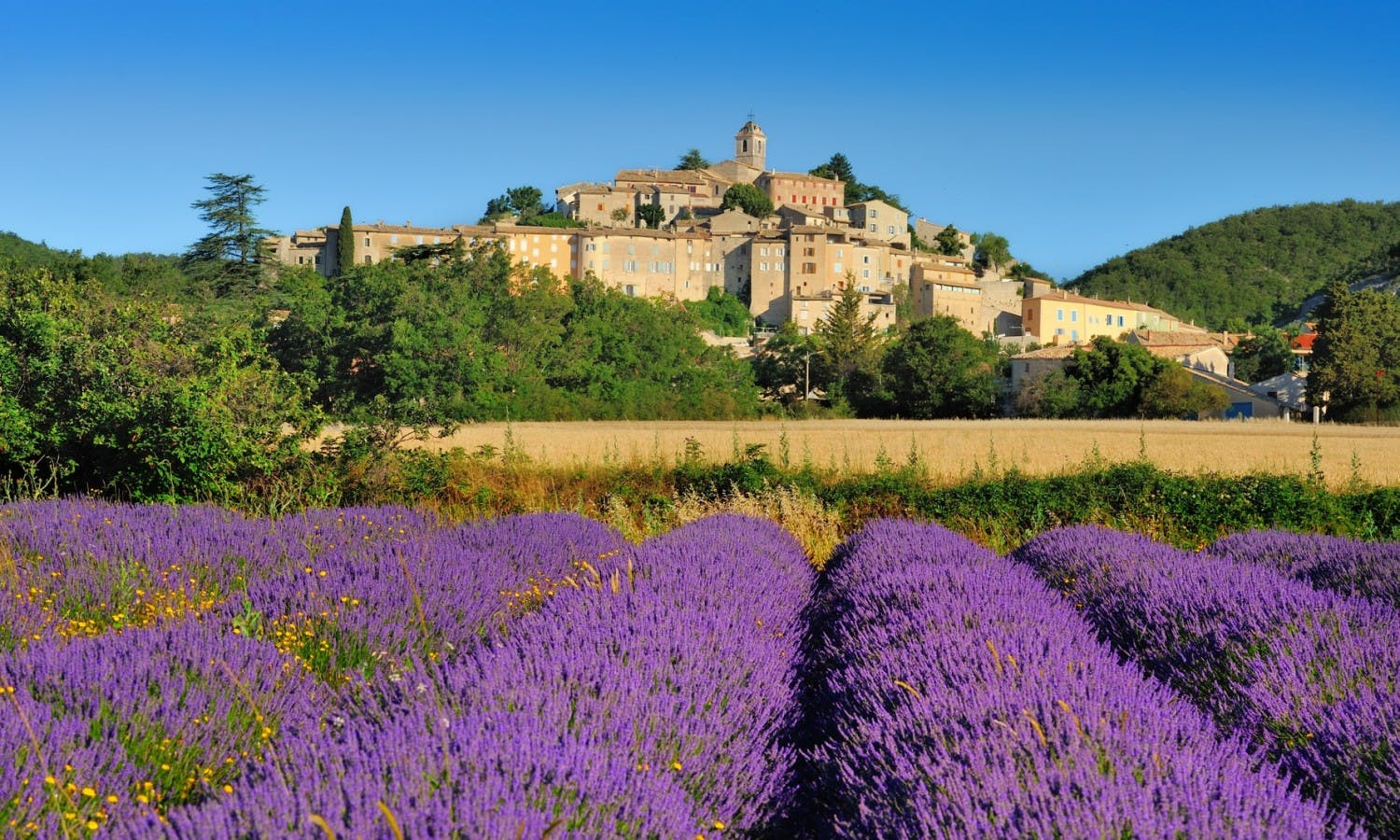 Avignon and villages of Luberon full day guided tour